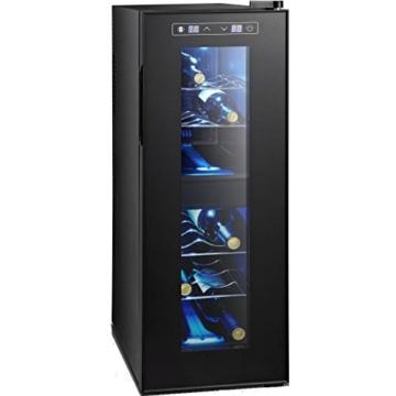 Syntrox Germany 12 Flaschen 2 Zonen Digitaler Getränkekühlschrank Weinkühlschrank -